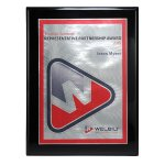 Choice of Digi-Color Plate on Deluxe Board Recognition Plaques