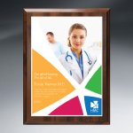 Choice of Digi-Color Plate on Economy Board Recognition Plaques