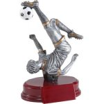 Soccer, M. Resin Soccer Trophy Awards